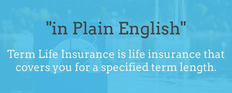 term life insurance definition, in plain english