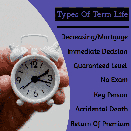 types of term life insurance