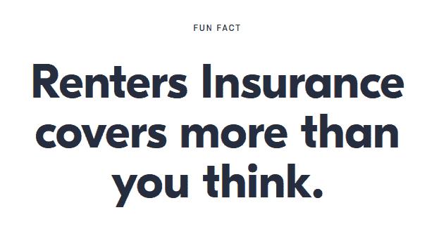 jetty insurance review fun fact