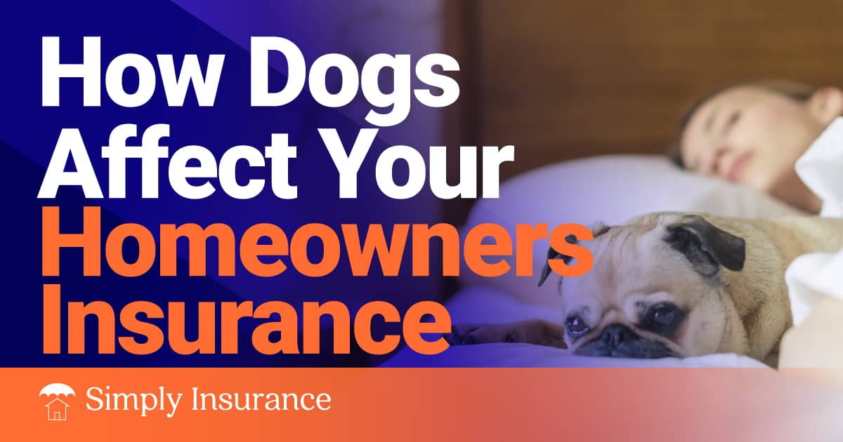 homeowners insurance dogs