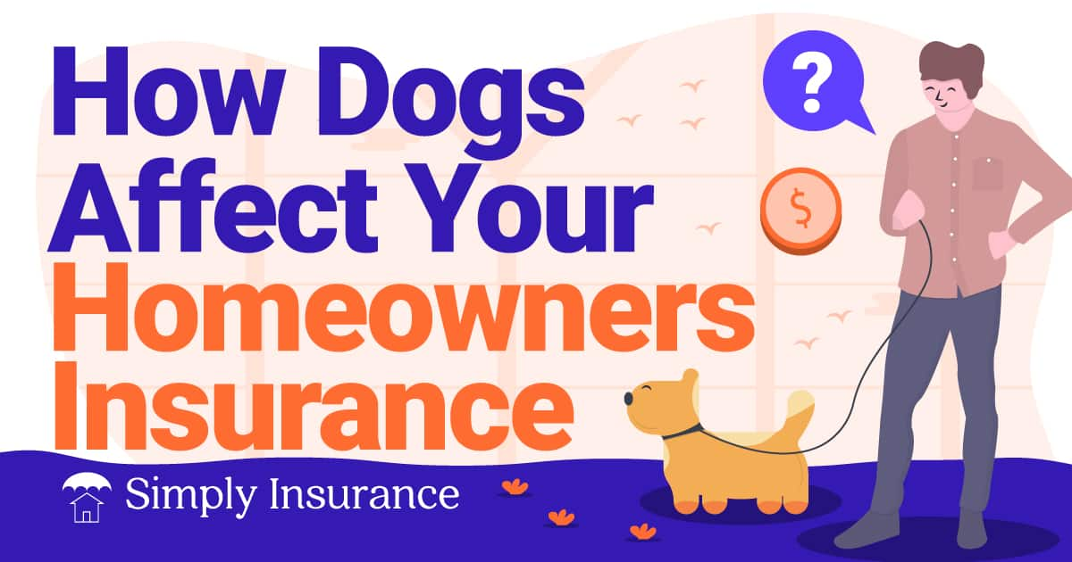 how dogs affect your home insurance